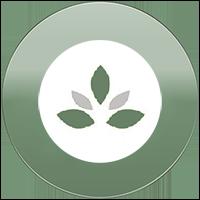 ethno-heilpflanzen-Button
